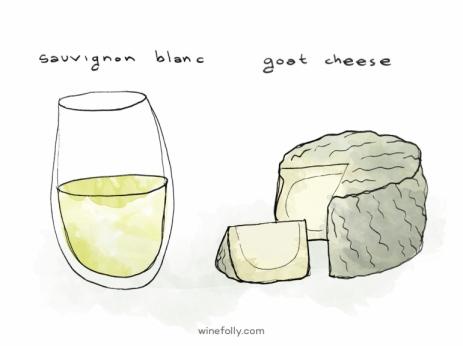 sauvignon-blanc-wine-goat-cheese-770x577