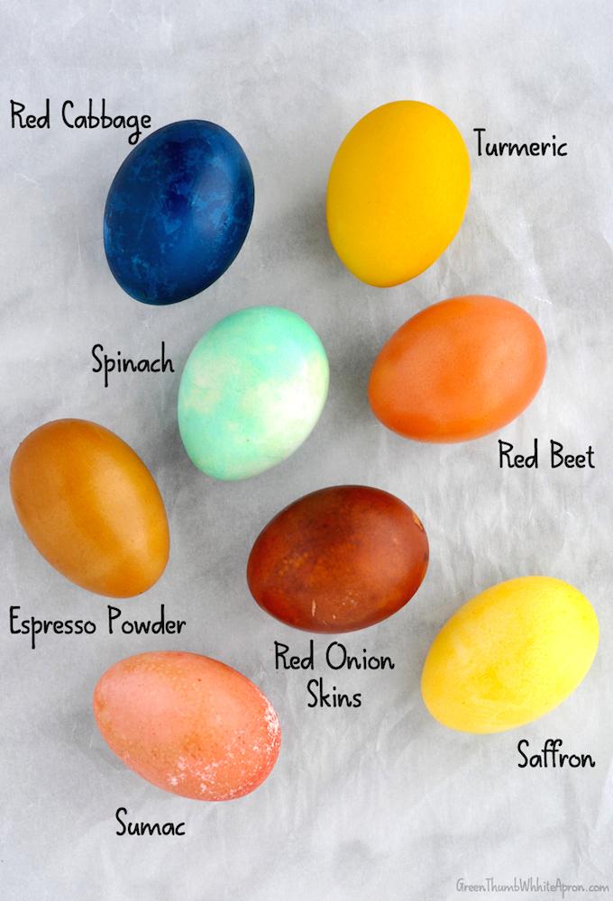 eggs4.jpg